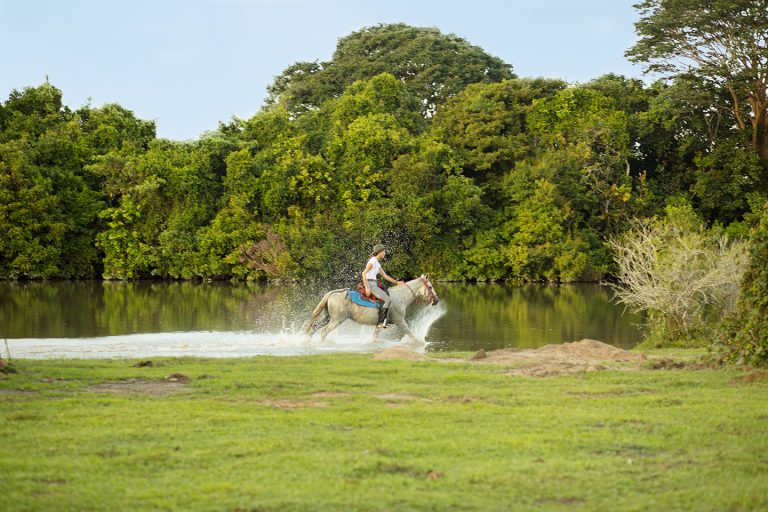 Horseback riding - Corocora Wildlife Camp in Colombia